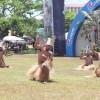 http://www.wyndhamgardenguam.com/wp-content/uploads/2018/04/Micronesia-Island-Fair.jpg